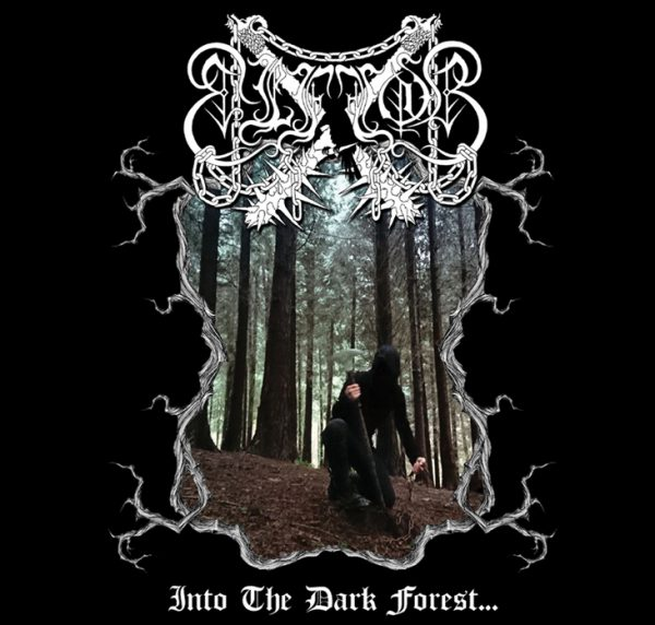 «INTO THE DARK FOREST…» CD